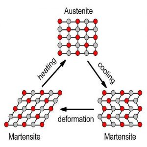 شبکه مولکولی آلیاژ حافظه دار